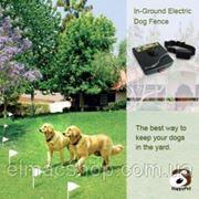 Электронный забор + ошейник для собак, модель 2013 г.
