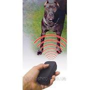 Ультразвуковой отпугиватель собак с фонариком DL-01 фото