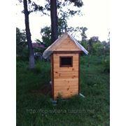 Отдых и оздоровление на лежаках с пчелами