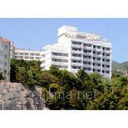 Отель Сосновая роща - Гаспра фото