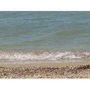 Отдых на море (люкс/эконом) фото