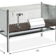 Клетка для кроликов производство Италия фото