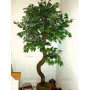 Дерево искусственное с натуральным стволом. фото