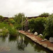 Строим пруды, водоемы. фото