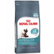 Корм для котов Royal Canin HairBall Care (для профилактики образования волосяных комочков) 2 кг фото