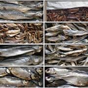 Производство рыбы фото