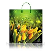 Желтые Тюльпаны фото