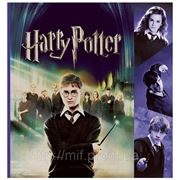 """Пакет с пластиковой ручкой """"Гарри Поттер"""" фото"""