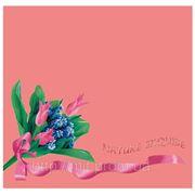 """Пакет с пластиковой ручкой """"Тюльпаны розовый (средний)"""""""