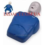 Манекени-тренажери штучного дихання (комплект) / Манекены-тренажеры искусственного дыхания (комплект) фото