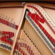 Музыкальный инструмент фото