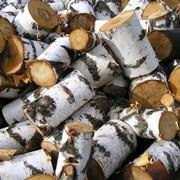 Продаем дрова для топки каминов, бань, саун и т. д (дуб, береза, ольха и т.д.).Большие и маленькие объемы, разные размеры полен по желанию заказчика. фото