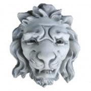 Голова льва фото