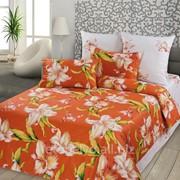 Комплект постельного белья ЕВРО - САТИН S 29 4 наволочки фото