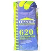 Клей для камня и керамогранита Consolit 620 фото