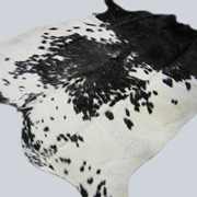 Шкуры коровы фото