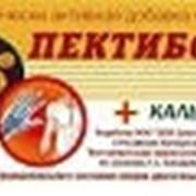 """Добавка для профилактики и лечения остеопороза и восстановления питания хрящевой ткани """"Пектибон"""" фото"""