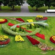 Садовник Ланшафтник фото
