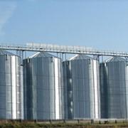 Элеватор для хранения зерна (CHIEF) - для накопления и хранения всех видов зерна (семенного, фуражного и продовольственного назначения) влажностью не более 14%.В силосах используется активное вентилирование. фото