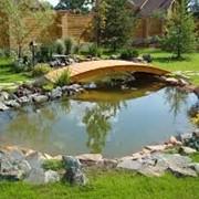 Устройство декоративных водоемов, отличное качество фото