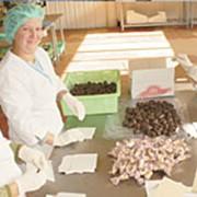 Шоколадные конфеты с сухофруктами фото