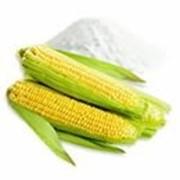 Модифицированный кукурузный крахмал Gletogel FSM фото