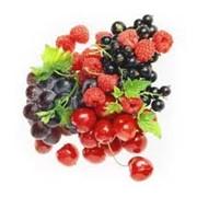 Продам саженцы деревьев и кустов ягод фото
