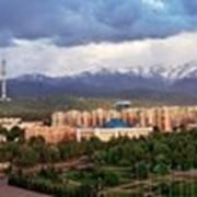 Тур по Алматы и окрестностям фото