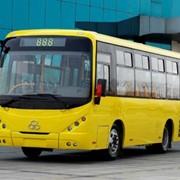 Автобус городской SHUCHI YTK 6803G фото