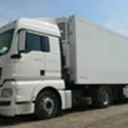 Седельный тягач MAN TGX 18.400 4x2 BLS с рефрижератором Schmitz фото