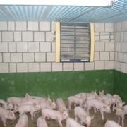 Отопление для животноводства, птичника, теплиц