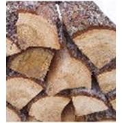 Услуги по заготовке круглого леса, пиловочника и сопутствующих материалов фото