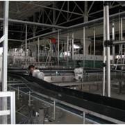 Монтаж технологического оборудования для пищевой промышленности фото