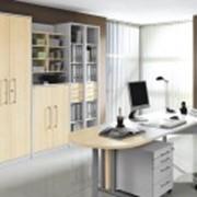 Мебель для домашнего кабинета из Германии фото
