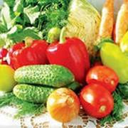 Ящики деревянные тарные для овощей фото