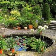 Устройство бассейнов, фонтанов, водоемов, пруда фото