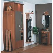 Мебель для прихожих Вита-М фото
