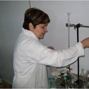 Консультации молочных технологов фотография