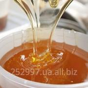 Мед рапсовый фото