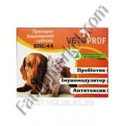 Пробиотик порошок для собак и котов 1г Ветопроф фото