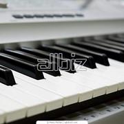 Инструменты электромузыкальные фото