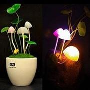 Ночник лампа Гриб Аватар NL-013 фото