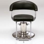 Парикмахерское кресло D CLASSICS HARP фото