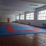 Учебно-тренировачные занятия для детей по боксу, дзюдо и таэквондо фото