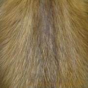 Мех натуральный лиса фото
