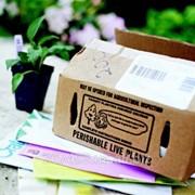Утилизация бумаги, бумажной тары и упаковки фото