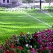 Комплексное благоустройство территории Симферополь, Крым, ландшафтный дизайн озеленение и благоустройство территории фото
