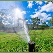 Монтаж систем автоматического полива фото