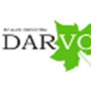 Террасная доска в Алматы Darvolex фото