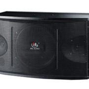Пассивная акустическая система HL Audio CS-550 фото